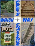 043014 which way